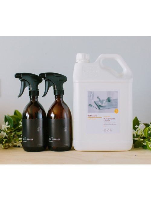 THE Christmas Multi Purpose Cleaner Package